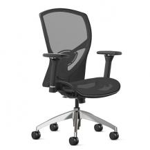 @217 Mesh Desk Chair with Arms